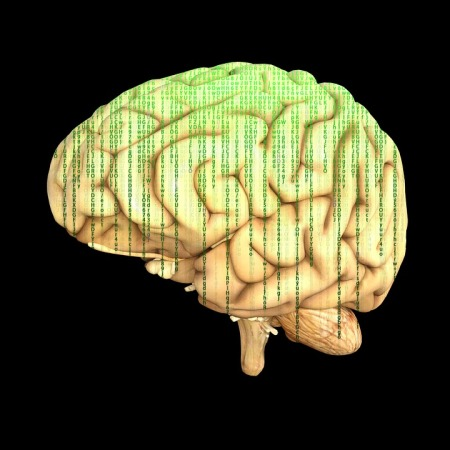 the brain with a matrix-style overlay